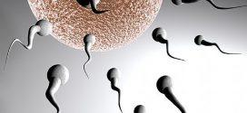 5 Manière d'Augmenter le Volume de Sperme Expulsé